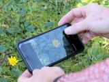Gestion des prairies : Des applications en herbe…